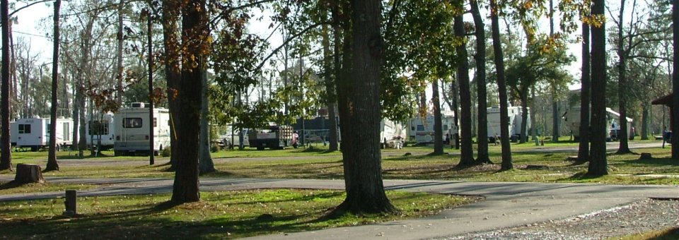 Pine Crest RV Park - Slidell, Louisiana | RVBuddy.com